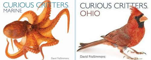 Curious Critters books